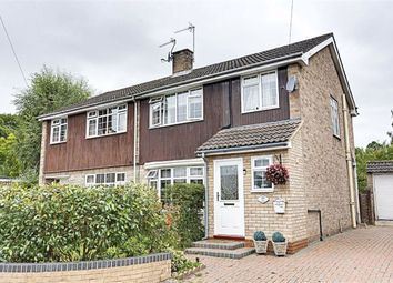 3 bed semi-detached house for sale in Ware Road, Hailey SG13