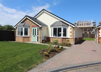 Thumbnail 3 bed bungalow for sale in Sherbourne Avenue, Barrow In Furness