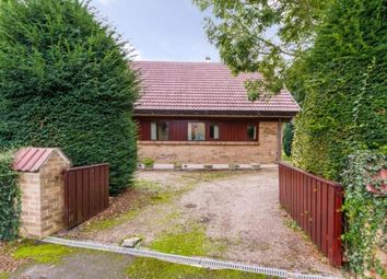 Thumbnail 3 bedroom bungalow for sale in Churchtown, Belton, Doncaster, Lincolnshire