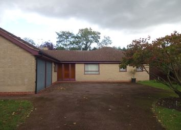 Thumbnail 3 bedroom detached bungalow to rent in The Yews, Leicester, Leicestershire