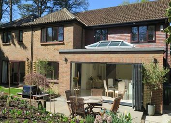 Thumbnail 5 bed property to rent in Geffers Ride, Ascot, Berkshire