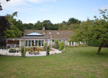 Thumbnail 4 bed detached bungalow for sale in East Winch Road, Ashwicken, Kings Lynn, Norfolk