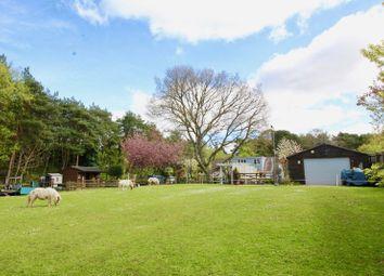 Thumbnail 4 bed detached bungalow for sale in Avon Causeway, Christchurch