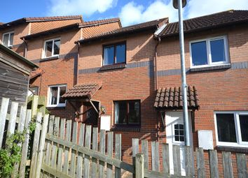 Thumbnail 2 bedroom terraced house for sale in Farm Hill, Exwick, Exeter