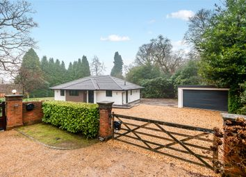 Thumbnail 3 bed detached bungalow to rent in Red Lane, Dorking, Surrey
