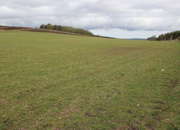 Thumbnail Land for sale in Fangorn Farm, Mulben, Keith