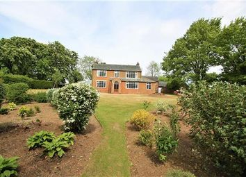 Thumbnail 4 bedroom detached house to rent in Highfields, Kirtling Road, Saxon Street, Newmarket