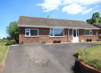 Thumbnail Detached bungalow for sale in Broadstone, Westonzoyland, Bridgwater