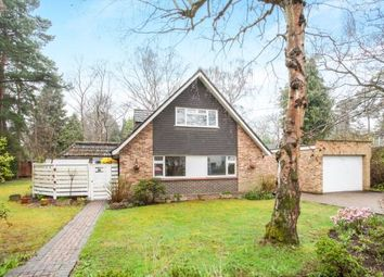 Thumbnail 4 bedroom bungalow for sale in Pyrford, Surrey