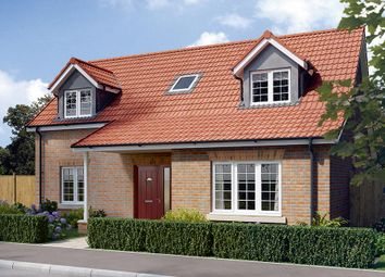 "Thumbnail 4 bed property for sale in ""The Canterbury"" at Derwent Close, Stamford Bridge, York"