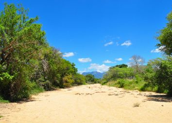 Thumbnail Land for sale in 118 Moria, 118 Moria, Moria, Hoedspruit, Limpopo Province, South Africa