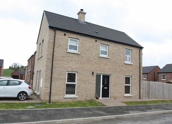 Thumbnail 3 bed semi-detached house for sale in Millbank Grove, Ballynahinch, Down