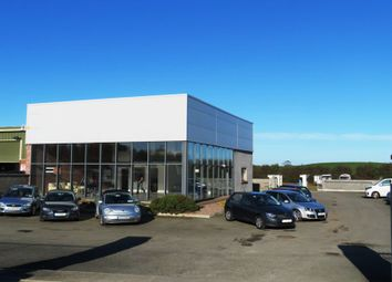 Thumbnail Property for sale in Modern Commercial Buildings & Enclosed Yard, Clonmore, Togher, Dunleer, Louth