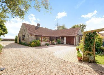 Thumbnail 3 bed detached bungalow for sale in Mutton Street, Marshwood, Bridport, Dorset