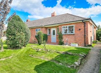 Thumbnail Semi-detached bungalow for sale in Grosvenor Road, Shaftesbury