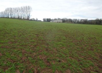 Thumbnail Equestrian property for sale in Newcastle, Monmouth