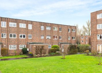 Studio to rent in Broadmeads, Ware SG12