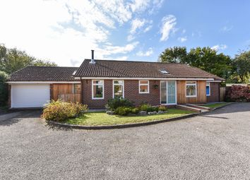 Thumbnail 3 bed detached bungalow for sale in Long Down, Petersfield