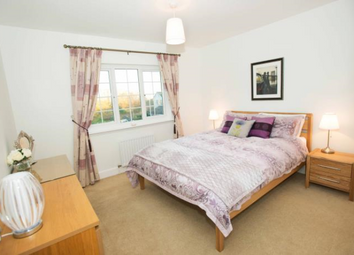 Thumbnail Room to rent in Hammerman Drive, City Centre