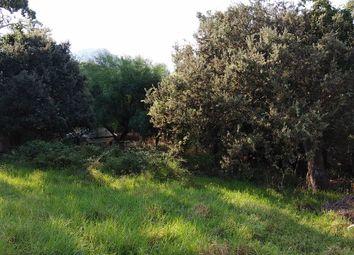 Thumbnail Land for sale in Cala San Vicente, Balearic Islands, Spain