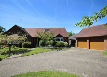 Thumbnail 3 bed detached bungalow for sale in Eggars Field, Bentley, Farnham