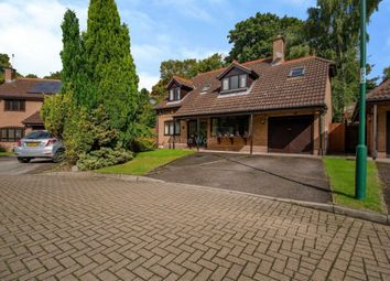 Thumbnail 4 bed detached house to rent in Park House Gates, Mapperley Park, Nottingham