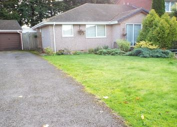 Thumbnail 2 bed bungalow to rent in Jenwood Road, Dunkeswell, Honiton