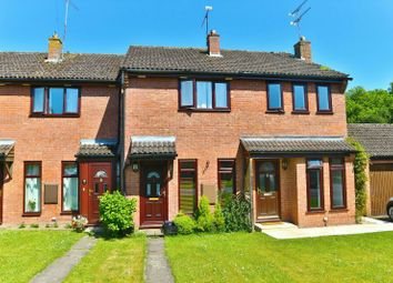 Thumbnail 2 bed property to rent in Portway, Riseley, Reading