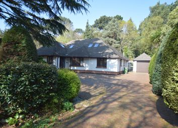 Thumbnail 5 bedroom bungalow to rent in Lindsay Road, Branksome Park, Poole