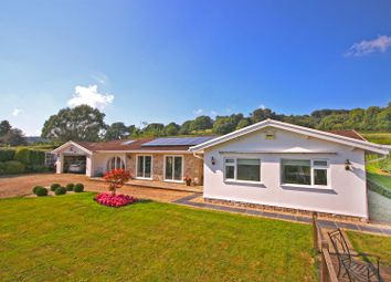 Thumbnail 5 bed bungalow for sale in Rhode Lane, Uplyme, Lyme Regis
