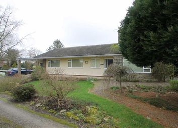 Thumbnail 4 bedroom detached bungalow to rent in Off High Street, Clive, Shrewsbury