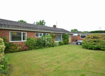 Thumbnail 3 bed detached bungalow for sale in Pomeroy Road, Tiverton