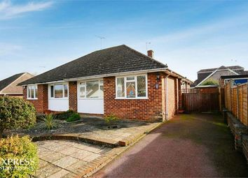 2 bed semi-detached bungalow to rent in Whiteheads Lane, Bearsted, Maidstone ME14