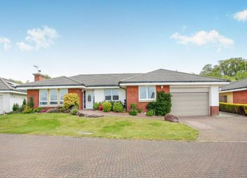 Thumbnail 4 bed bungalow to rent in Turnberry Avenue, Dumfries