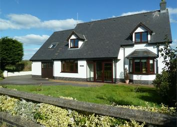 Thumbnail 3 bed detached bungalow for sale in Gwernant, Tanygroes, Cardigan, Cardigan, Ceredigion