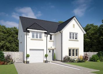 "Thumbnail 4 bedroom property for sale in ""The Colville"" at Willow Park Drive, Penicuik"