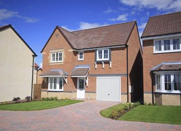 "Thumbnail 4 bedroom detached house for sale in ""Somerton"" at Bay Court, Beverley"