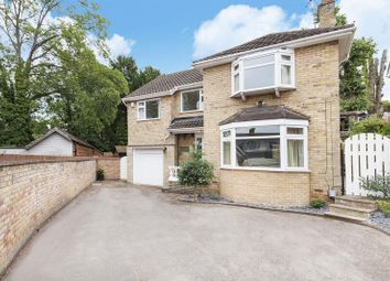 Thumbnail 4 bed detached house for sale in Scotts Close, Ware