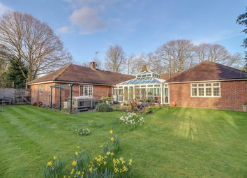 Thumbnail 4 bed detached bungalow for sale in Norris Grove, Broxbourne