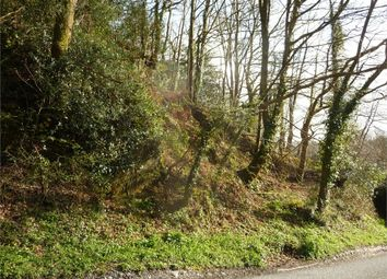 Thumbnail Land for sale in 0.82 Acres Or Thereabouts Of Woodland, (Formerly Part Of Streamside, 2 Pendre), Felindre Farchog, Crymych, Pembrokeshire