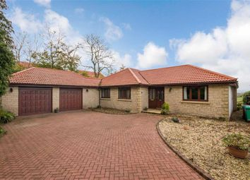 Thumbnail 3 bed detached bungalow for sale in 18, Craighouse Place, Saline, Fife