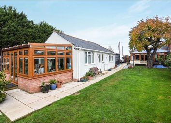 Thumbnail 3 bed bungalow for sale in Boreham, Chelmsford, Essex