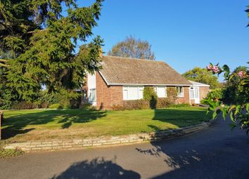 Thumbnail 2 bed detached bungalow for sale in Great Waldingfield, Sudbury, Suffolk