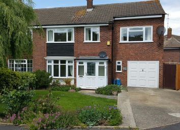 Thumbnail 5 bed semi-detached house to rent in Coltsfoot Road, Ware