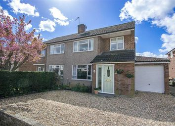 Thumbnail 4 bedroom semi-detached house for sale in Cowper Crescent, Bengeo, Herts