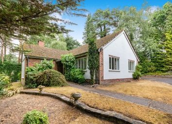 Thumbnail 2 bed bungalow to rent in Burnt Hill Road, Lower Bourne, Farnham