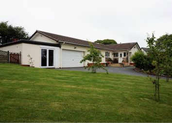 Thumbnail 4 bed detached bungalow for sale in Carnkie, Helston