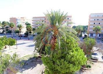 Thumbnail 1 bed apartment for sale in Pinomar, Guardamar Del Segura, Spain