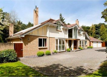 Thumbnail 5 bed detached house for sale in Bury Road, Poole