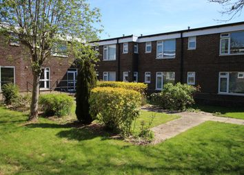 Thumbnail Studio to rent in Claylands Rd, Bishops Waltham
